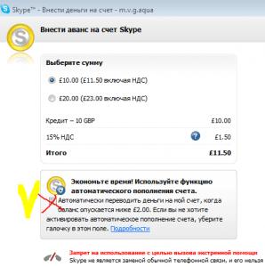 avtomat_oplata_skype