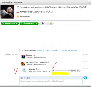 peredacha-failov-v-skype-5