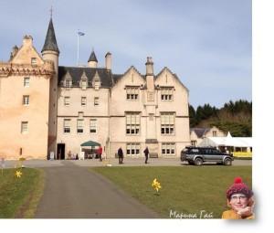 нарциссы и замок Броди (Brodi Castle and daffodils)