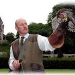 Сокольничий замка Данробин - Andy Hughes falconer