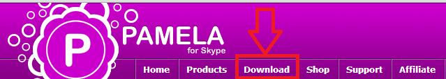 загрузка бесплатной версии программы Pamela для Skype