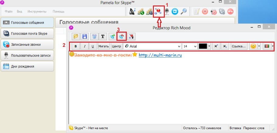 Rich Mood, встроенный редактор, в программе Pamela для Skype