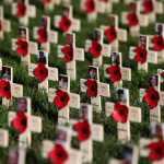 Кресты погибшим в Афганистане в Саду Памяти - ноябрь 2014