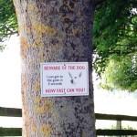 Осторожно, злая собака - Замок Стюарт