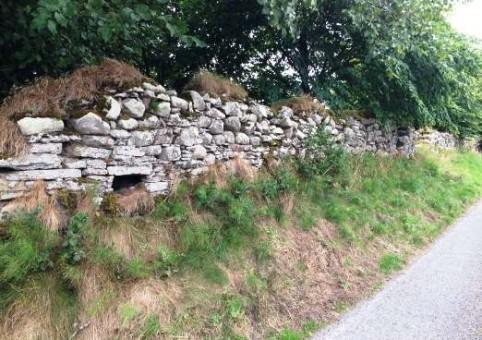 Старинная каменная ограда вокруг замка Стюарт — dry stone dyke