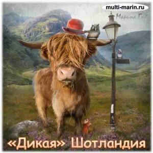 Дикая Шотландия - Марина Гай - multi-marin.ru