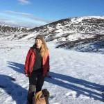 Рассказ о специальном подкорме для северных оленей
