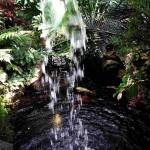 Грот с водопадом и золотыми рыбками. Ботанический сад в Инвернессе