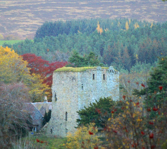 Замок Драмин — общий вид
