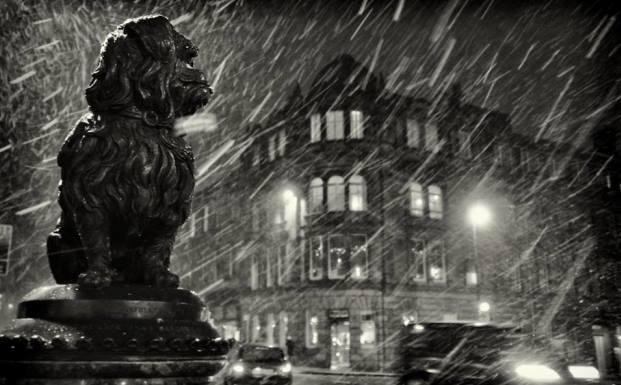 Любители собак навещают этот памятник при любой погоде