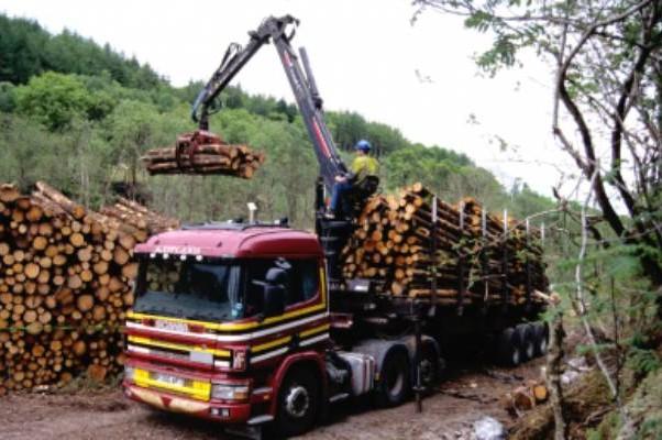 Сопутствующее производство. Norbord — Шотландия