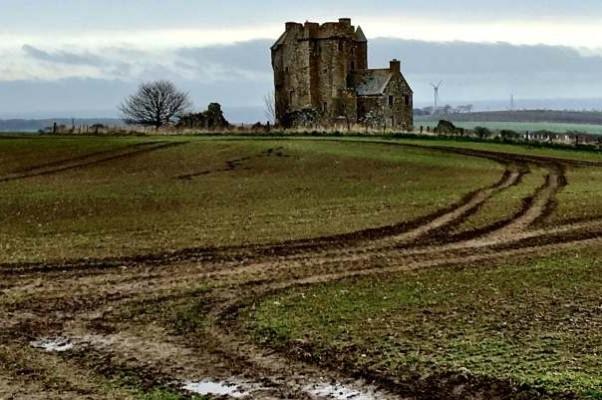 Скоро слева от дороги к замку заколосится ячмень