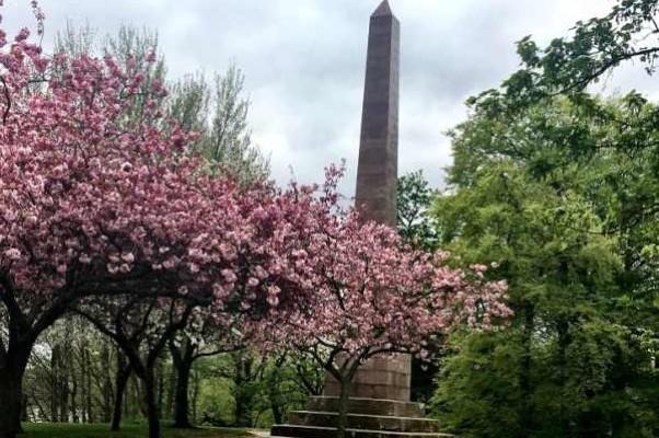 Монумент Джеймсу Томсону в Форресе — майское буйство сакур