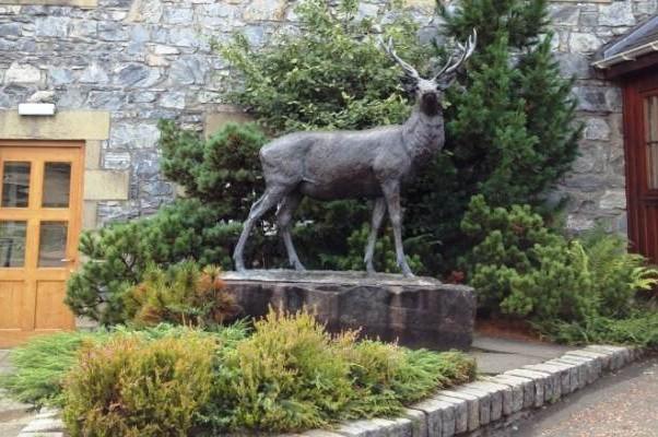 Скульптура оленя перед входом в кафе Гленфиддих