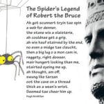 Легенда о Роберте Брюсе и пауке